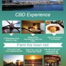 Cape Town Life in the CBD - Infographic